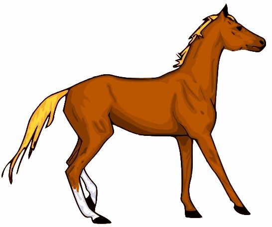 Horseback Riding Clipart