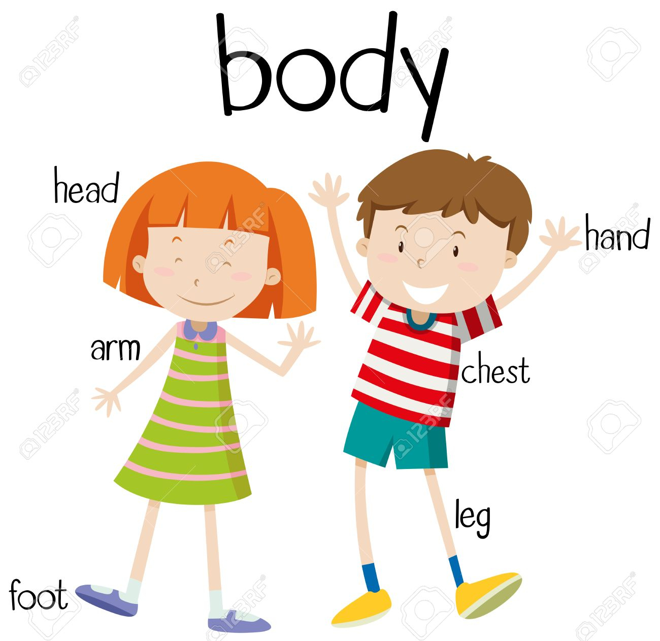 1300x1263 Clipart Of Human Body Part Top 79 Body Parts Clip Art