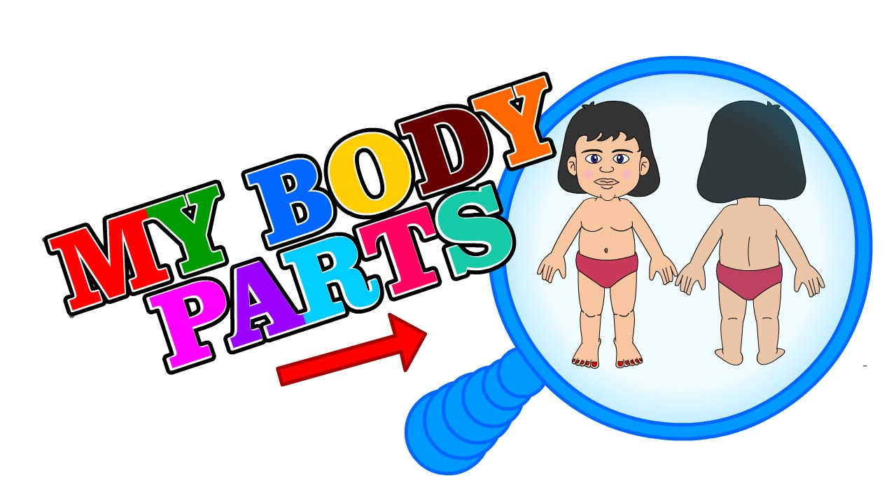 1280x720 Finding Human Body Parts For Kids To Learn Batman Science Kidz