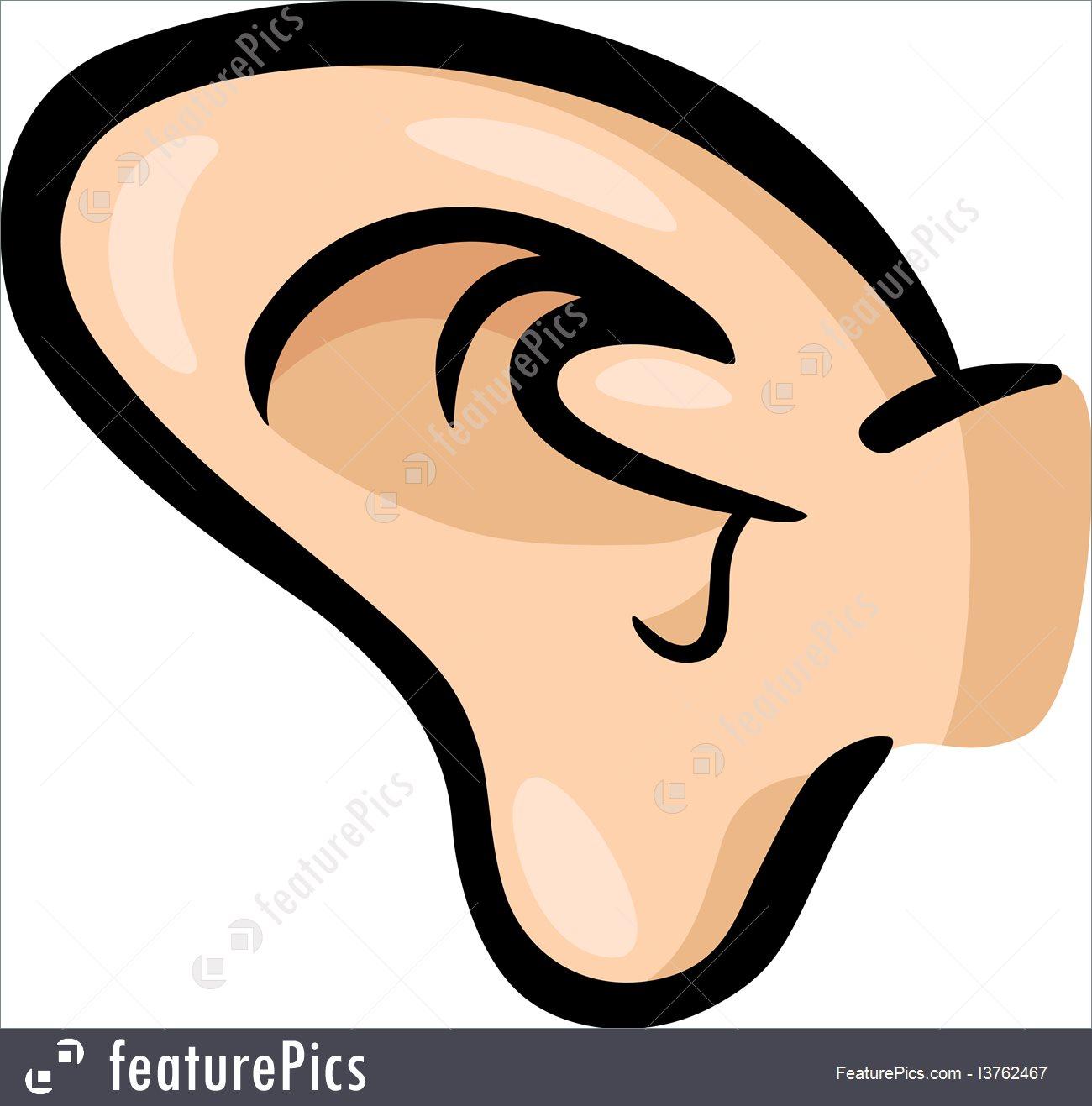 1300x1317 Illustration Of Ear Clip Art Cartoon
