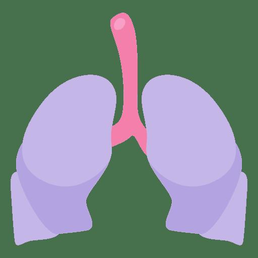 512x512 Lung Organ Human Body Clip Art