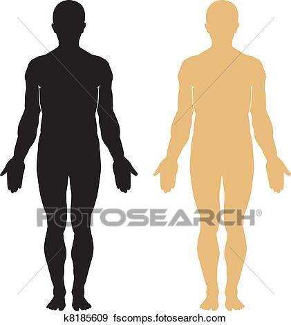 421x470 Lovely Clip Art Human Body