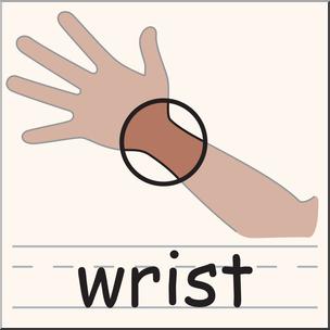 304x304 Clip Art Wrist