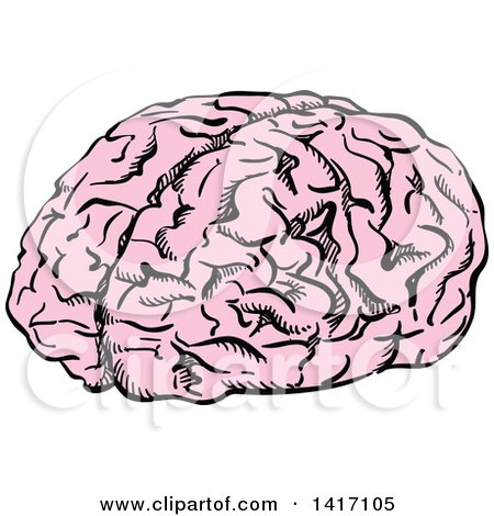 450x470 Clipart Of A Black And White Human Brain 3