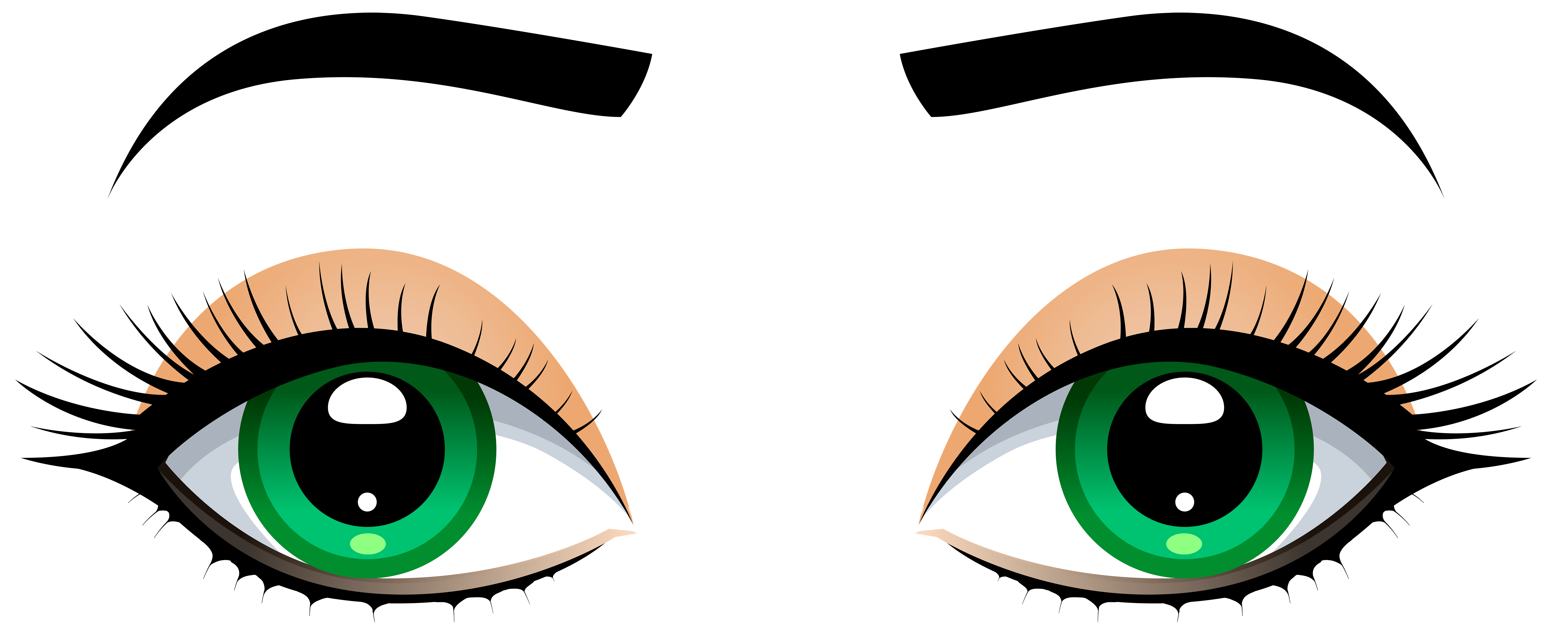 8000x3239 Female Eyes With Eyebrows Png Clip Art