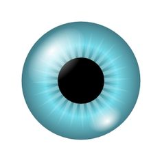 236x231 Green Eye Clipart Human Body Our God Made Science Boards