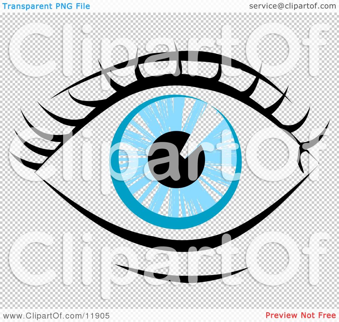 1080x1024 Human Eye Clip Art Clipart Panda