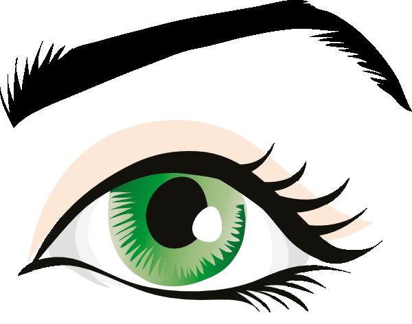 600x472 Human Eye Clip Art Clipart Panda