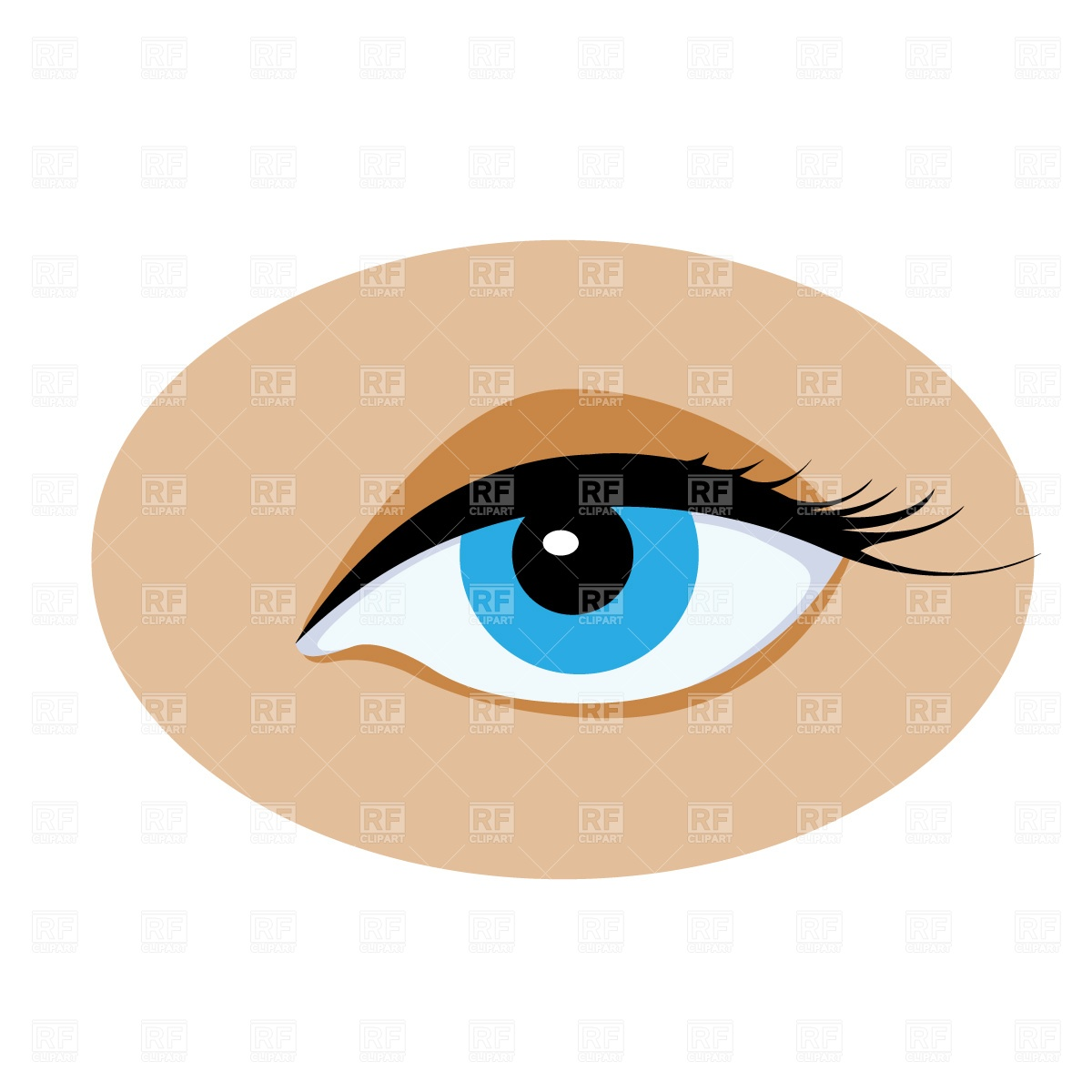 1200x1200 Opened Human Eye Free Download Vector Clip Art Image