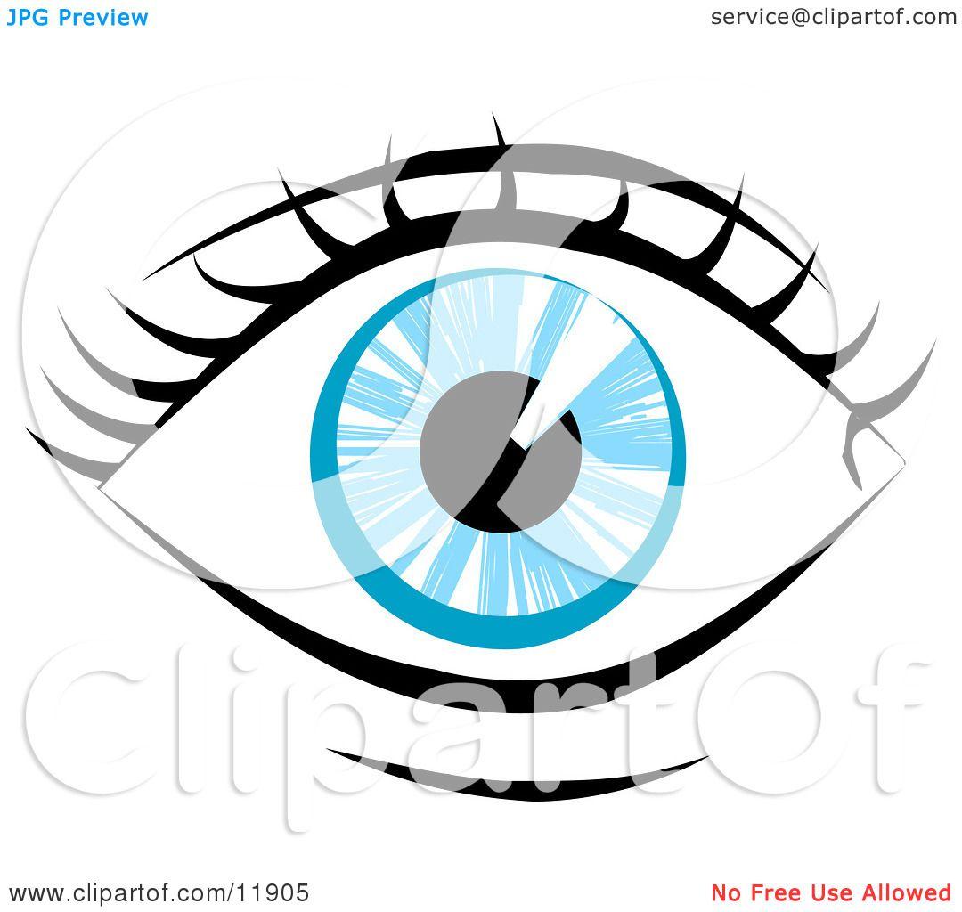 1080x1024 Blue Human Eye And Eyelashes Clipart Illustration By