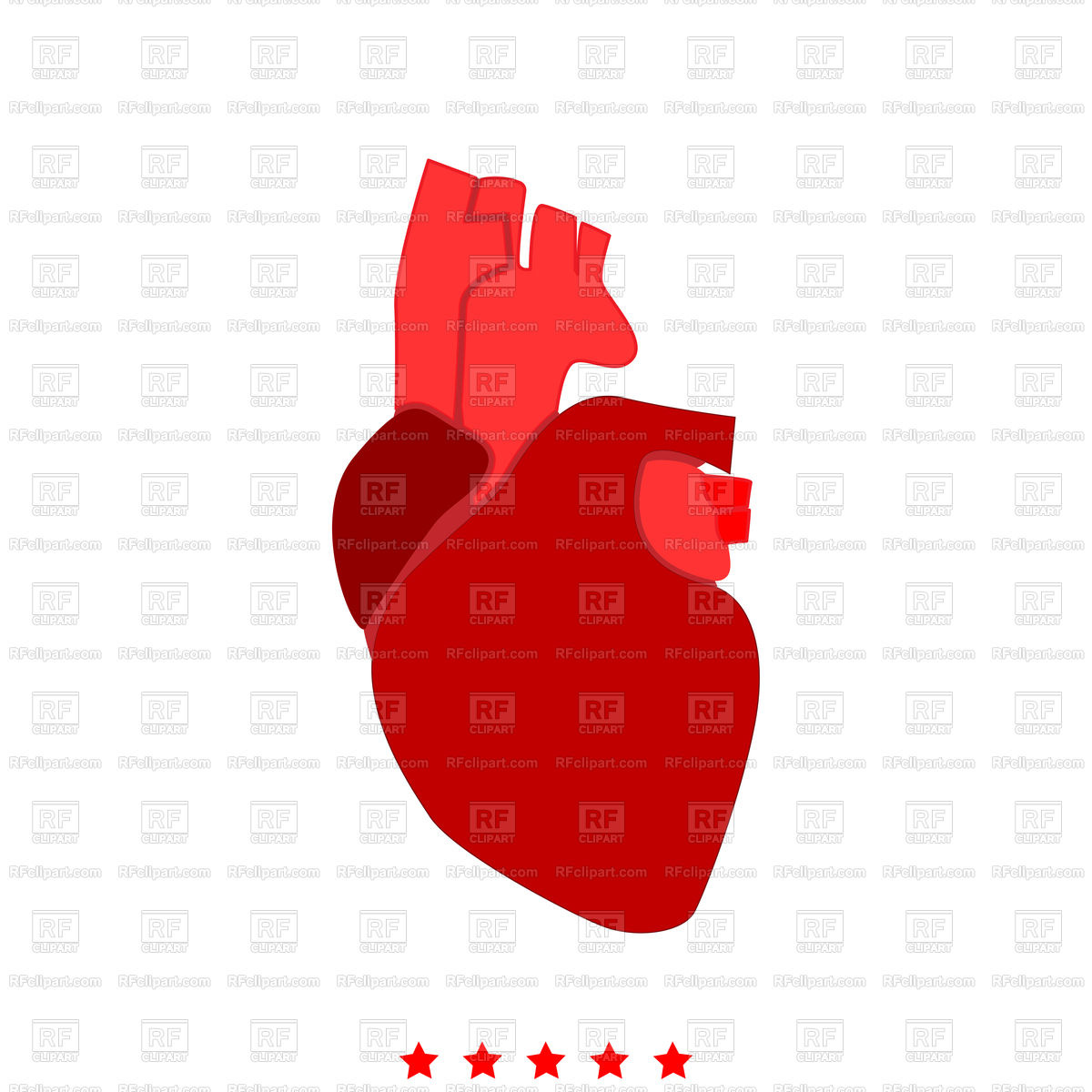 1200x1200 Human Heart Red Icon Royalty Free Vector Clip Art Image