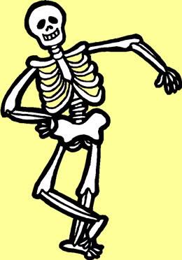 260x372 Bones Clipart Skeletal System