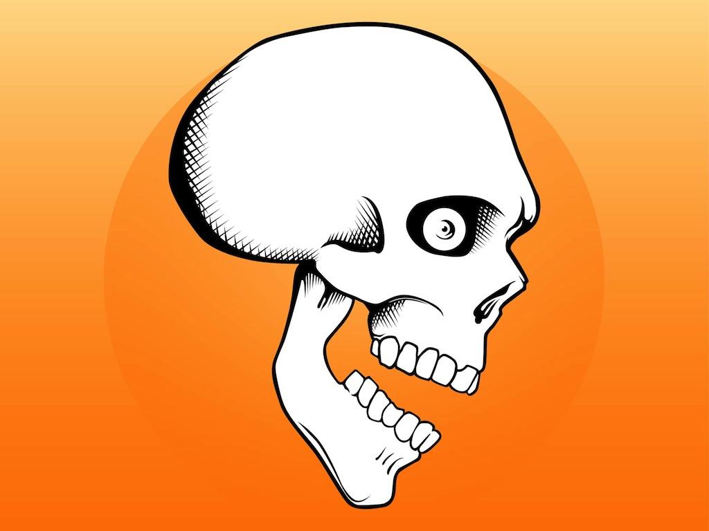 1024x768 Skull Images Cartoon