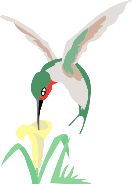432x599 Green And White Hummingbird With Flower Clip Art