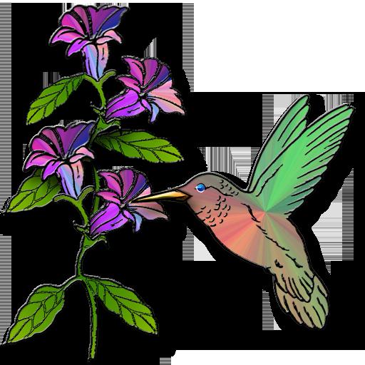 512x512 Hummingbird Icondoit