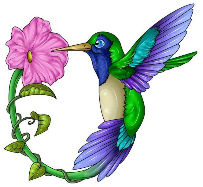 664x611 Hummingbird Clipart Stencil