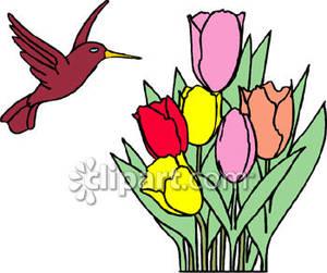 300x251 Hummingbird Clipart, Suggestions For Hummingbird Clipart, Download