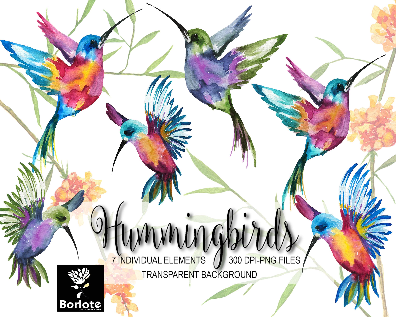 3000x2400 Hummingbirds, Colorful Birds, Watercolor Hummingbirds, Blue
