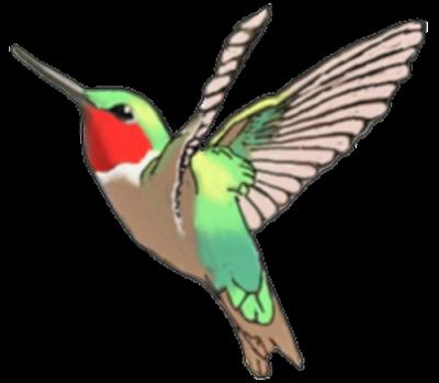 400x349 Hummingbird Tattoos Png Transparent Images Free Download Clip Art