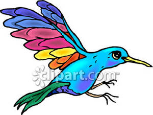 300x225 Hummingbird With Colorful Wings
