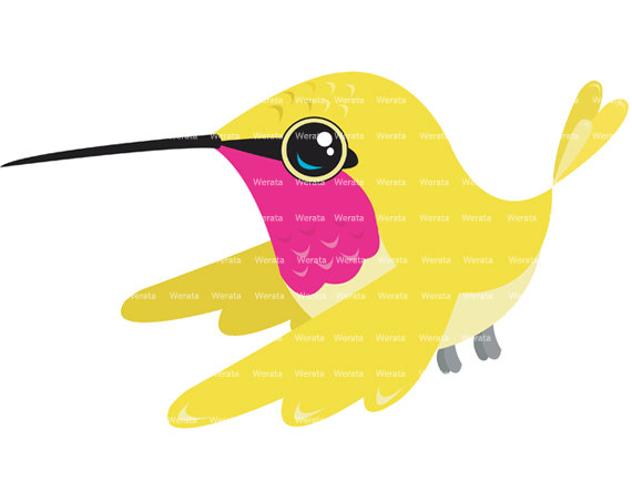 570x453 Hummingbird Clipart 6