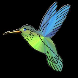 300x300 Hummingbird Clip Art Free Hummingbird Clipart Pictures Clipartix