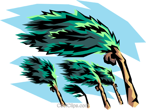 480x364 Clip Art Hurricane Hurricane Winds And Palm Tree Royalty Free