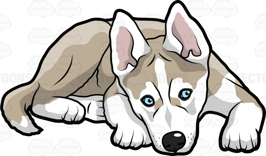 1024x602 A Puppy Looking Scared And Cold Vector Clipart And Cartoon Images