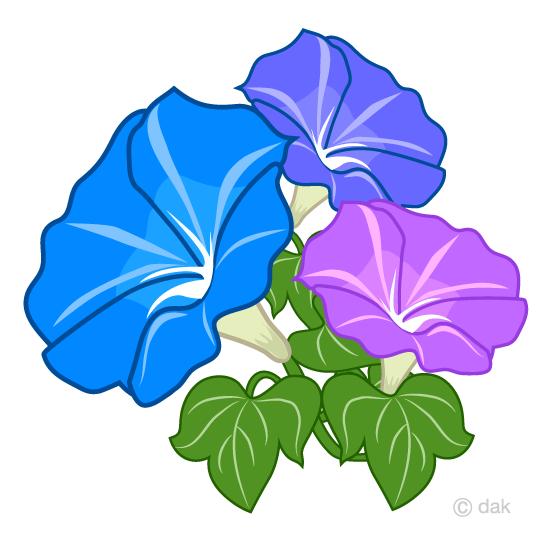 540x540 Free Three Color Morning Glory Flower Clip Art Cartoon