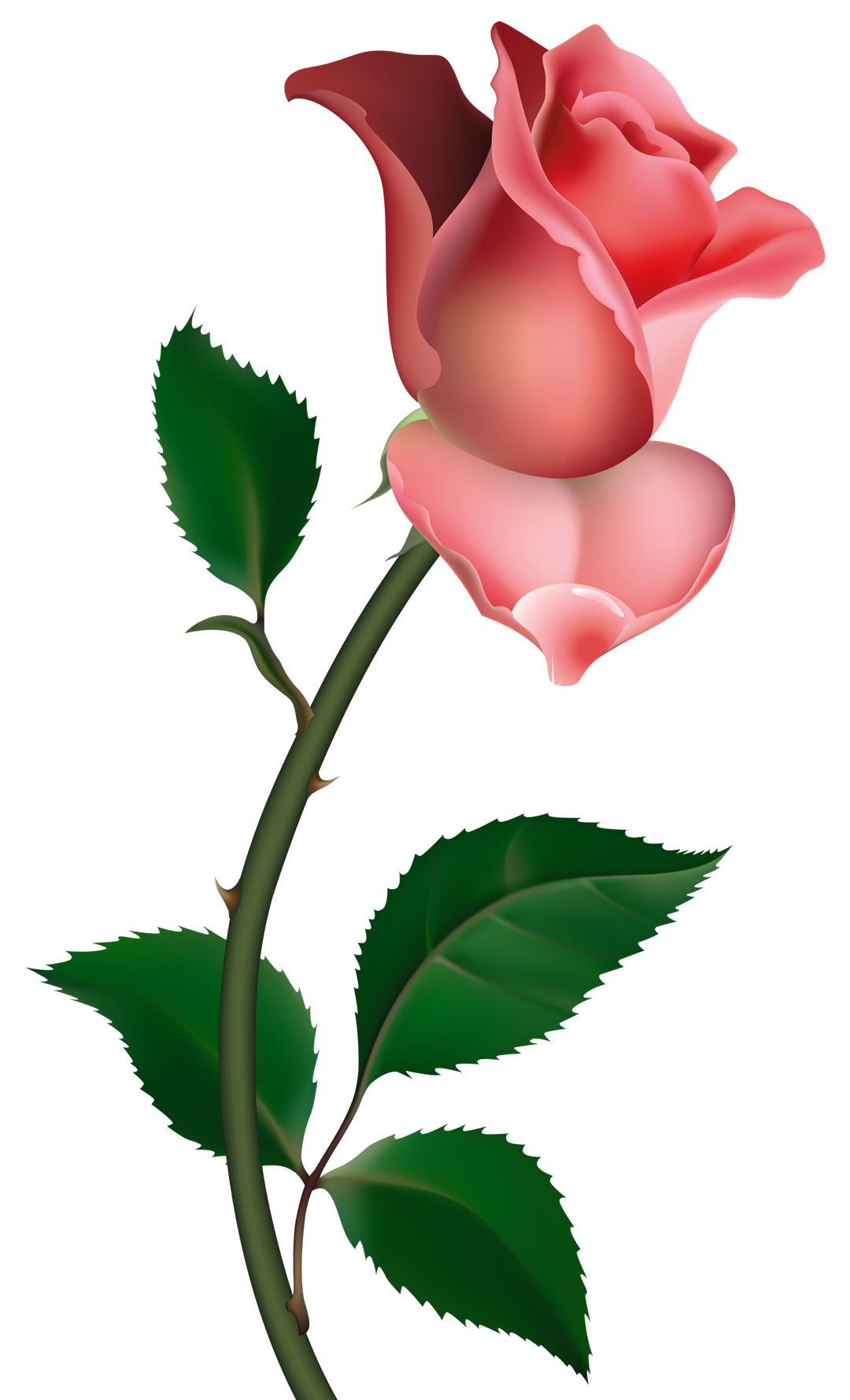 1080x1778 Clipart Rose Png Picture To My Mom, Liz.elsbury, I Miss U Vary