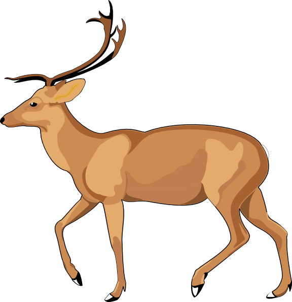576x595 Walking Animals Clipart