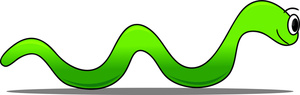 300x95 Worm Clipart Straight