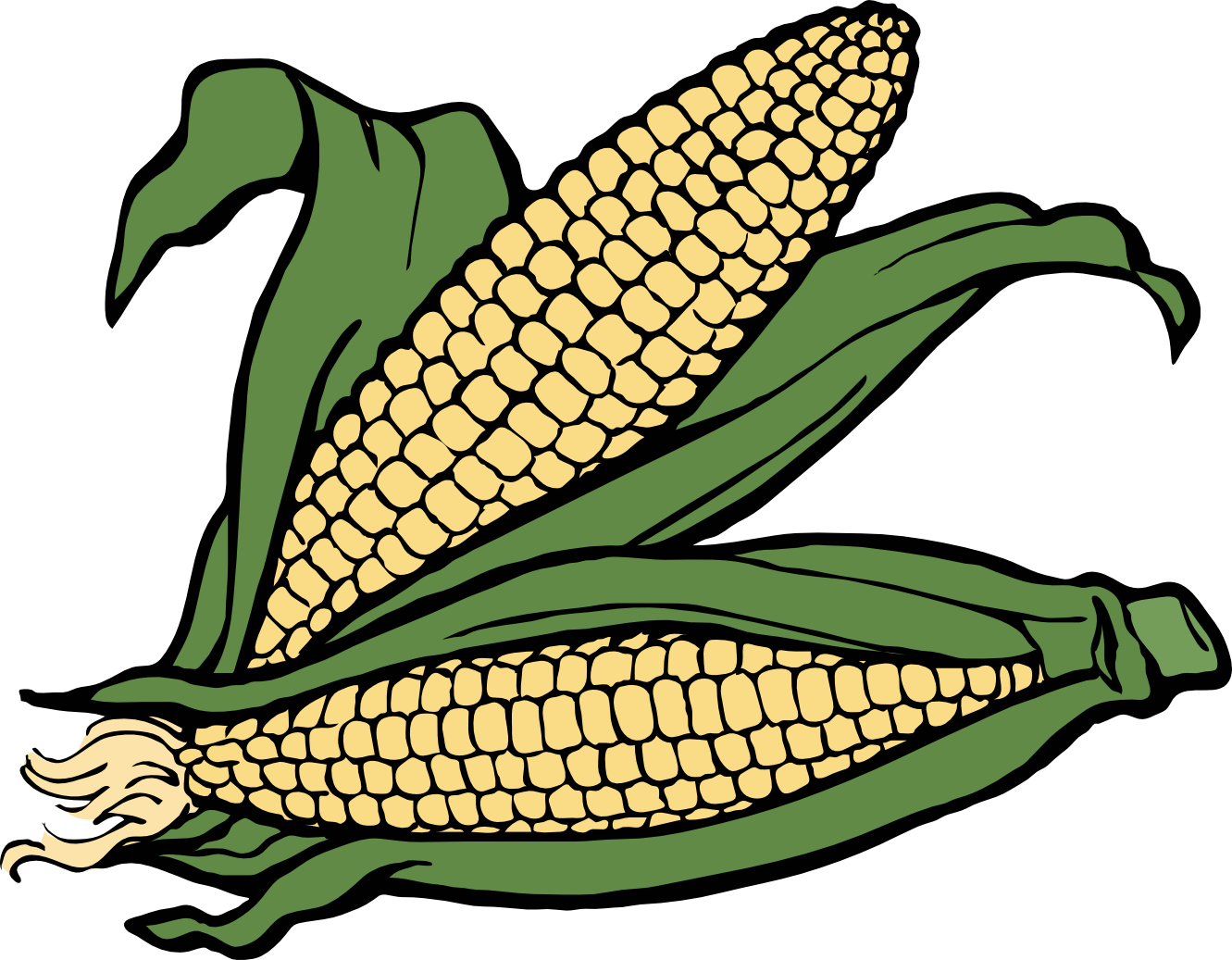 1331x1037 Corn Plant Clip Art Black And White Clipart Best, Corn Plant Clip