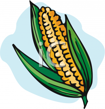 338x350 Farm Corn Clipart