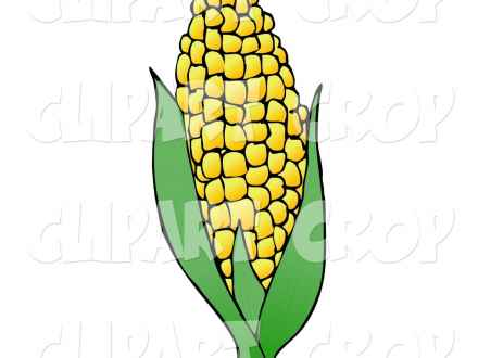 440x330 Soybean Plant Clipart Soybean Stock Vectors Amp Vector Clip Art