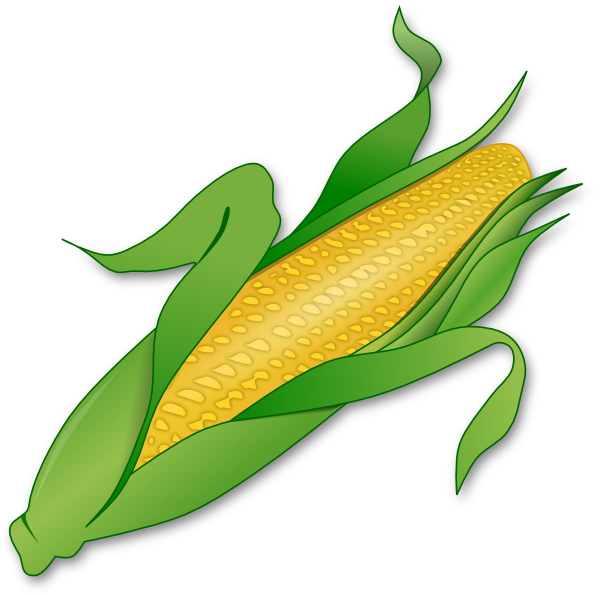 600x595 Corn Clipart Corn Clip Art