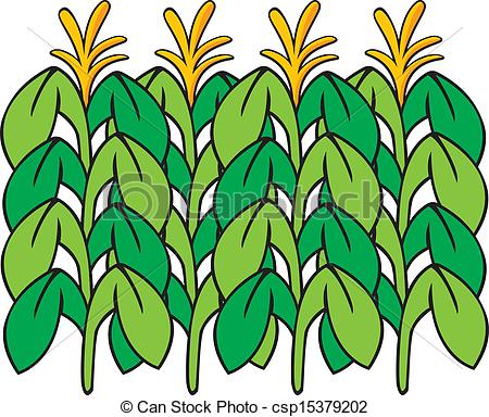 450x384 Corn Clipart Indian Corn Clip