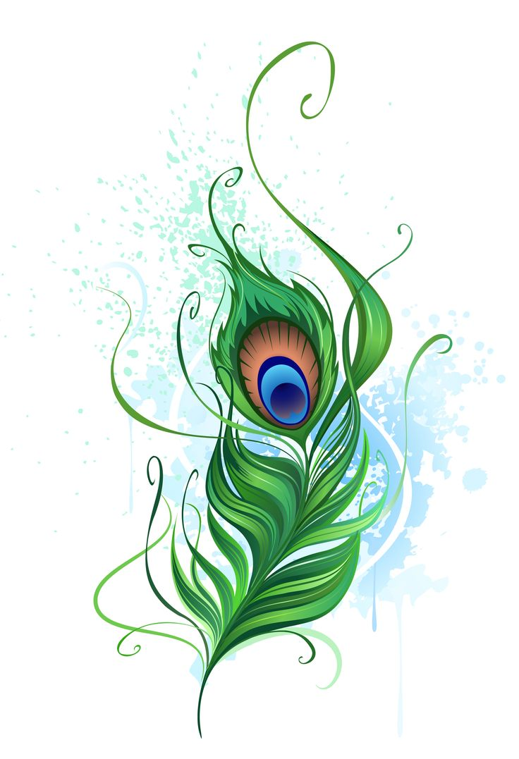 736x1077 Flute With Peacock Feather Clip Art Clipart