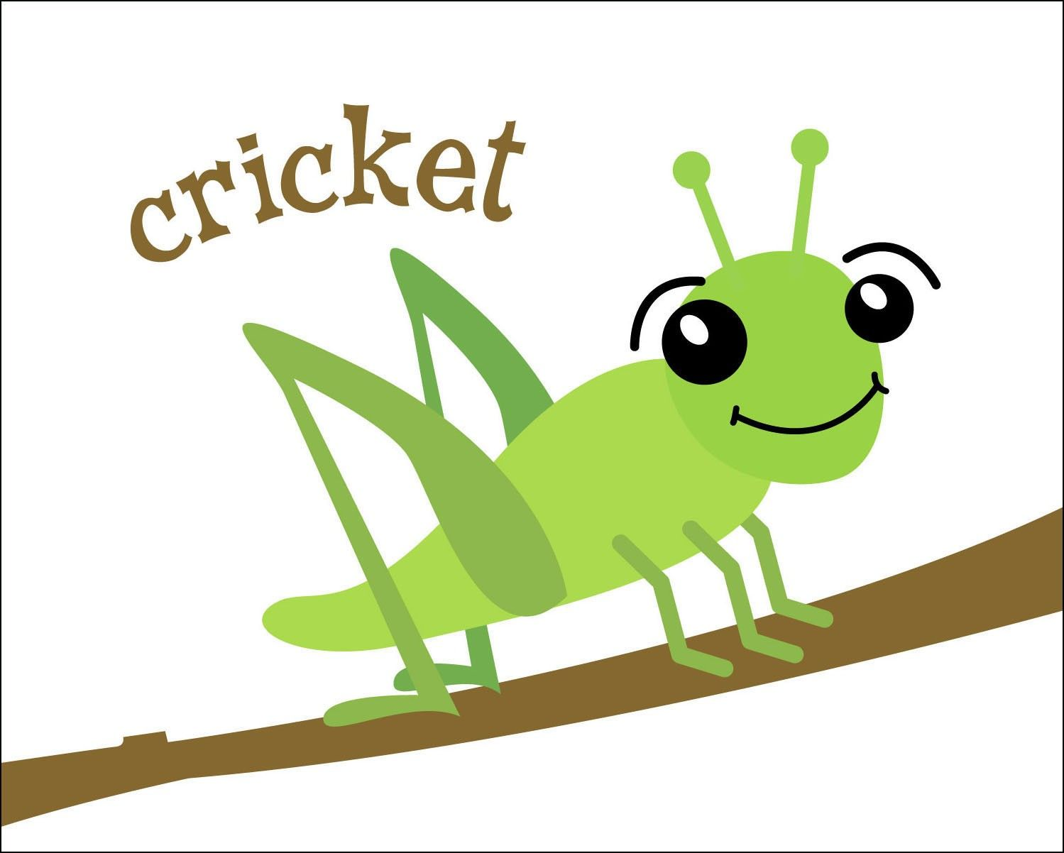 1499x1202 Cute Cricket Insect Clipart
