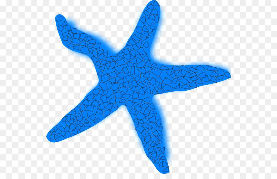 900x580 Starfish Brittle Star Clip Art