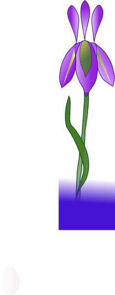 234x598 Iris Png, Svg Clip Art For Web