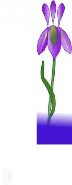 244x626 Iris Clip Art. Previous Next Clipart Panda