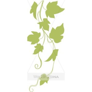 300x300 Ivy Growth Clipart