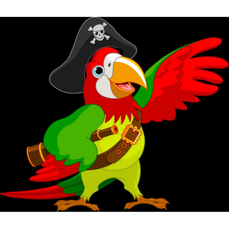 800x800 Pirate Parrot Piracy Jack Sparrow Clip Art