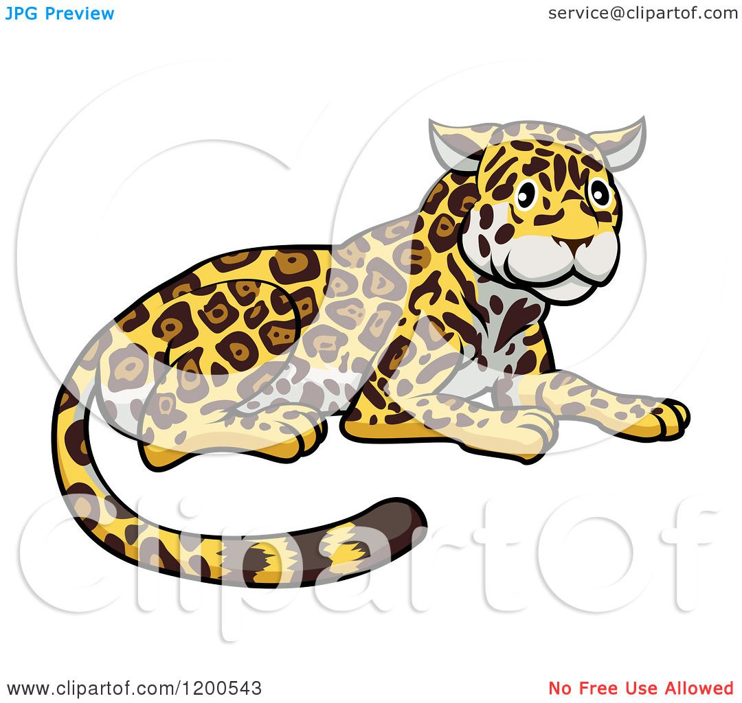 1080x1024 Cartoon Of A Cute Jaguar Resting