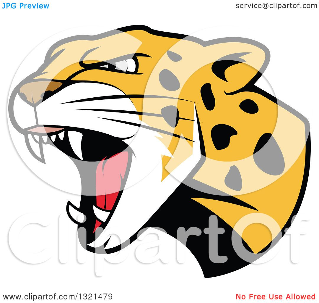 1080x1024 Clipart Of A Roaring Angry Jaguar Or Leopard Big Cat Head