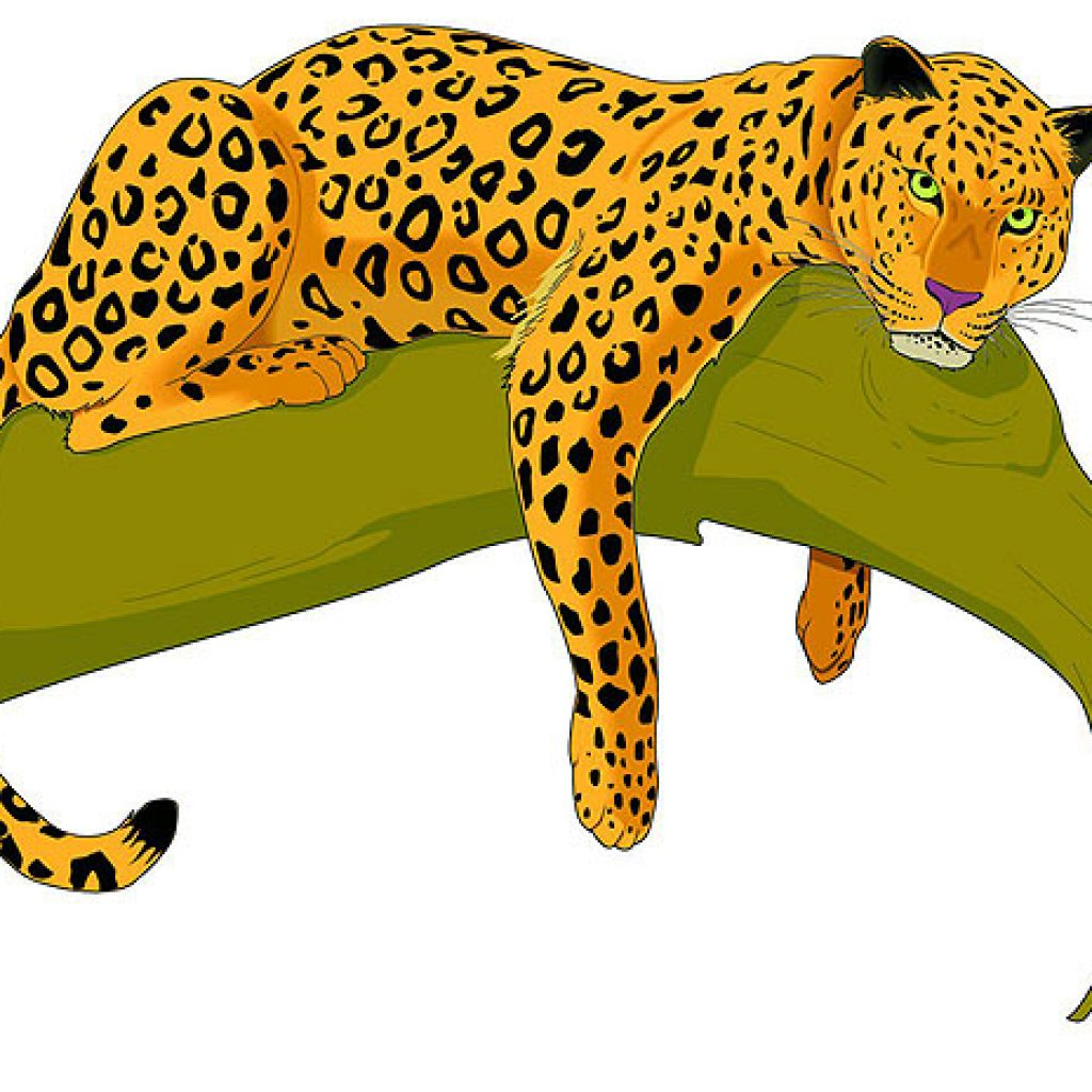 jaguar clipart at getdrawings com free for personal use jaguar rh getdrawings com jaguar clipart easy jaguar clipart easy