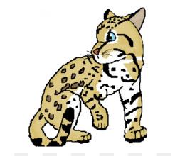 260x220 Ocelot Felidae Jaguar Clip Art