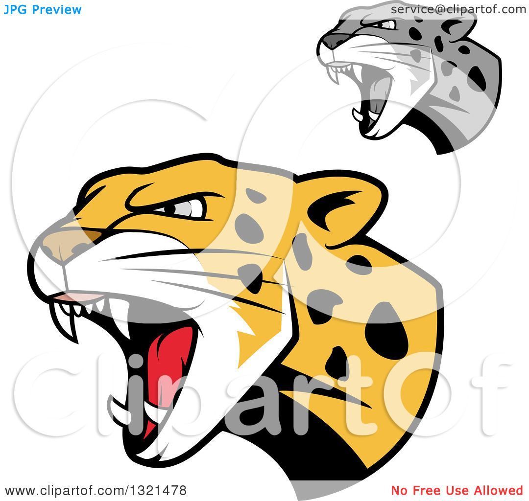 1080x1024 Clipart Of Roaring Angry Jaguar Or Leopard Big Cat Heads
