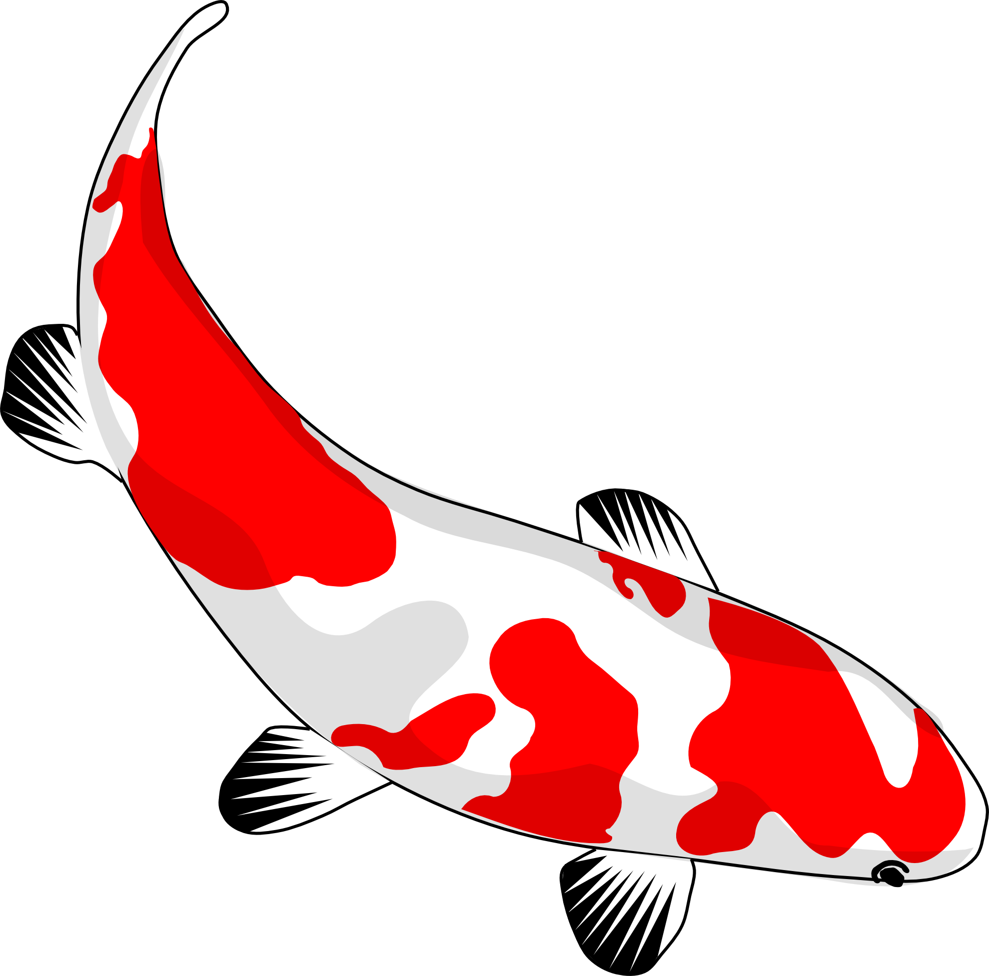 Koi Fish Outline Drawing at GetDrawings.com | Free for personal use ...